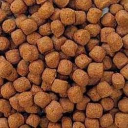 Koifutter AL-Profi-Futter Orange d 6 mm 15 kg
