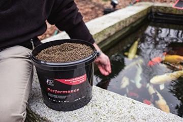 Koi-Futter Farbfutter Sommer, 6 mm, 4kg - tolle Farbverstärkung der Koi durch hochwertigste Spirulina-Algen, starkes Wachstum - auch als Fisch-Futter - 3