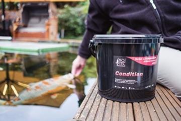 Koi-Futter für Frühjahr & Herbst, schwimmend, 6mm, 3kg - für Gesundheit, Nährstoffversorgung, Kondition & Belastungsfähigkeit - auch für Gold-Fische - 3