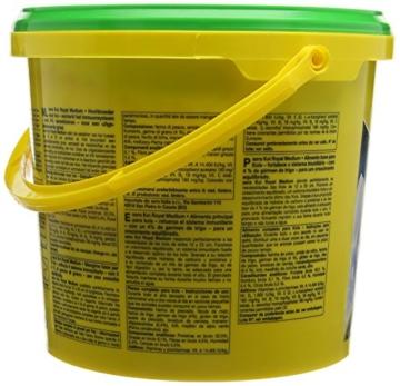 sera 07117 KOI ROYAL MEDIUM 3800 ml - Hauptfutter für ein ausgewogenes Wachstum von Koi zwischen 12 und 25 cm - 5