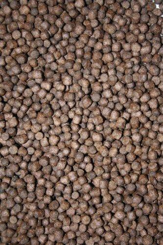 Winterfutter, Koifutter energiereiches Sinkfutter für junge und erwachsene Koi mit arktischem Fischöl und Fischmehl 3kg, 5 mm Koipellets im wiederverschließbaren PE-Eimer - 2