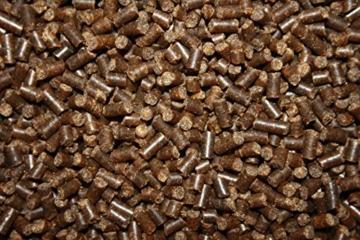 Winterfutter für Koi, Sinkfutter für Koi im Winter, liefert den Koi schonend Energie auch bei niedrigen Wassertemperaturen, Tomodachi Winterfood Winter Diet oder Winter Diet Junior, wahlweise 3mm oder 5mm, 3 kg Eimer (3mm) - 4