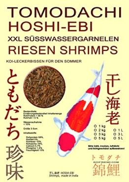 Riesengarnelen, Sommerfutter für Koi, Tomodachi XXL Shrimps, getrocknete gigantisch große Süßwassergarnelen 3-5cm, Tomodachi Koileckerli, optmal für die Handfütterung der Koi im Sommer, für vitale, zahme und zutrauliche Koi, 5 Liter Eimer - 1