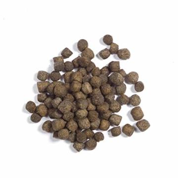Koimenue® Koi-Color 38/12 EX + 6% Spirulina 7 kg - 3