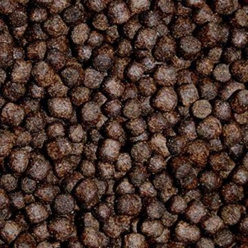 Tomodachi Koifutter für das Frühjahr, langsam sinkendes Energiefutter für Koi, Premium Frühjahrsfutter, Koifutter mit arktischen Rohstoffen, sehr energiereich, hochverdaulich auch bei Kälte 5mm 2kg - 4
