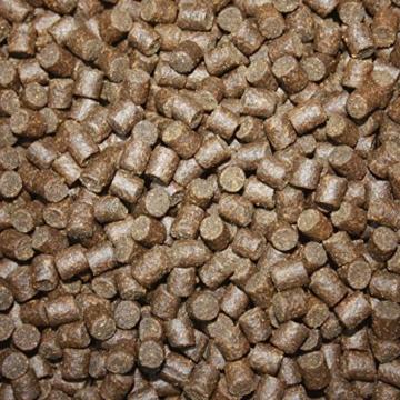 Tomodachi Störfutter energiereich, hochverdaulich, Qualitätsfutter Stör, sinkendes Kraftfutter, Aufzuchtfutter für Störe, ideal für jede Jahreszeit dank arktischer Rohstoffe, Störsinkfutter 5mm 5kg - 4