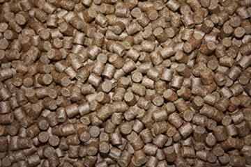Tomodachi Störfutter energiereich, hochverdaulich, Qualitätsfutter Stör, sinkendes Kraftfutter, Aufzuchtfutter für Störe, ideal für jede Jahreszeit dank arktischer Rohstoffe, Störsinkfutter 5mm 5kg - 7