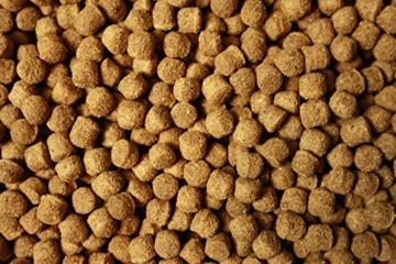 Koifutter Tomodachi All Season Good Shape Schwimmfutter für Koi, Ganzjahresfutter für Koi jeden Alters, 2kg, 6 mm Koipellets - 5