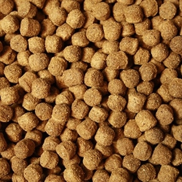 Koifutter Tomodachi All Season Good Shape Schwimmfutter für Koi, Ganzjahresfutter für Koi jeden Alters, 2kg, 6 mm Koipellets - 6