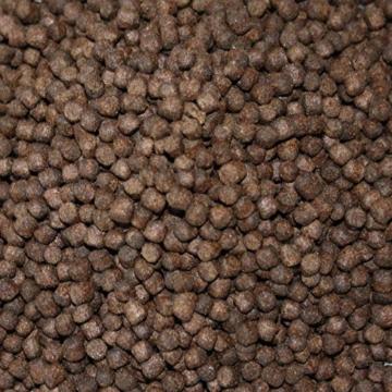 Tomodachi Koifutter, Frühjahrsfutter, Energiefutter für Koi, langsam sinkend mit arktischem Fischmehl, Fischöl und Krillmehl, sehr energiereich, gut verdaulich bei Kälte, Frühjahrsfutter 5mm 15kg - 6