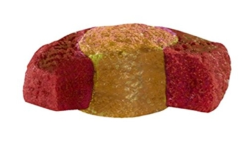 sera 07013 KOI Professional Frühjahr-/Herbstfutter 2200 g - Das leicht verdauliche Premium-Futter für Temperaturen unter 17 °C - 7