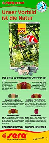 sera 07013 KOI Professional Frühjahr-/Herbstfutter 2200 g - Das leicht verdauliche Premium-Futter für Temperaturen unter 17 °C - 10