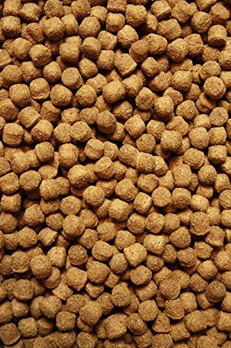 Tomodachi Koifutter, Schwimmfutter für Koi in 6mm Pelletgröße, Ganzjahresfutter Koi, All Season KoiSchwimmfutter 6 mm 15kg - 3
