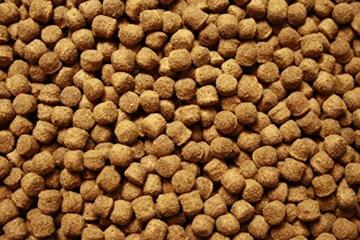 Tomodachi Koifutter, Schwimmfutter für Koi in 6mm Pelletgröße, Ganzjahresfutter Koi, All Season KoiSchwimmfutter 6 mm 15kg - 6