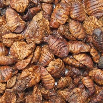 Tomodachi Seidenraupenpuppen, Silkworm, Naturnahrung getrocknet, Sanji Seidenraupen, proteinreich, gesunder Koisnack für die Handfütterung im Sommer - Vitale, schöne, handzahme Koi 5L Eimer - 4