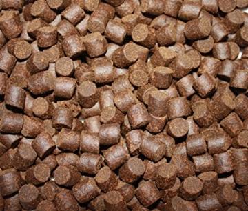 Tomodachi Störfutter extragroß 10mm Energiefutter für Störe, Störsinkfutter deutsche Top Qualität, Premium Störfutter perfekt für das ganze Jahr, energiereich, hochverdaulich, arktische Rohstoffe 5kg - 3