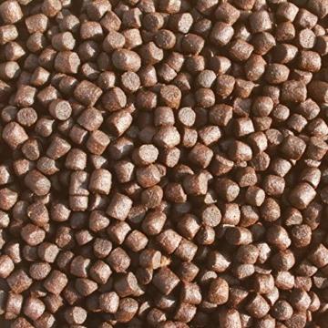 Tomodachi Koifutter energiereich, schwimmend, Wachstumsfutter, Farbe u. Immunschutz mit arktischem Fischmehl und Fischöl - hohe Futterverwertung, geringe Wasserbelastung, Colorbooster 2kg 6mm - 5