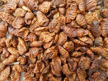 Tomodachi Seidenraupenpuppen, Silkworm, Naturnahrung getrocknet, Sanji Seidenraupen, proteinreich, gesunder Koisnack für die Handfütterung im Sommer - Vitale, schöne, handzahme Koi 10L Eimer - 2