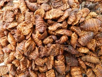 Tomodachi Seidenraupenpuppen, Silkworm, Naturnahrung getrocknet, Sanji Seidenraupen, proteinreich, gesunder Koisnack für die Handfütterung im Sommer - Vitale, schöne, handzahme Koi 10L Eimer - 3