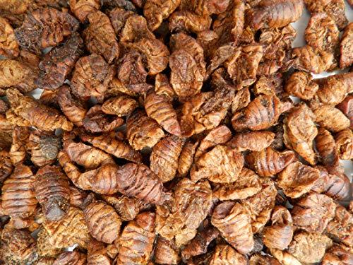 Tomodachi Seidenraupenpuppen, Silkworm, Naturnahrung getrocknet, Sanji Seidenraupen, proteinreich, gesunder Koisnack für die Handfütterung im Sommer - Vitale, schöne, handzahme Koi 10L Eimer - 5