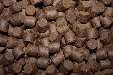 Tomodachi Störfutter groß, Energiefutter Stör perfekt für die ganzjährige Störfütterung, Störsinkfutter hochverdaulich, arktische Rohstoffe, geringe Wasserbelastung, Premium Stör Kraftfutter 8mm 10kg - 6