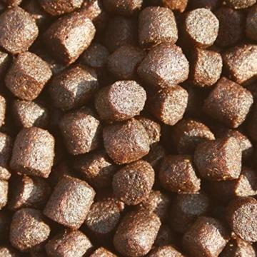 Koifutter, Wachstumsfutter, Energiefutter Koi, Tomodachi Colorbooster Schwimmfutter mit Astaxanthin für Farbschutz und Immunschutz 5kg, 6mm Koipellets - 3