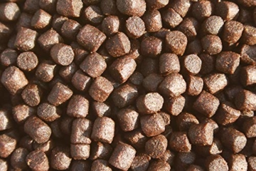 Koifutter, Wachstumsfutter, Energiefutter Koi, Tomodachi Colorbooster Schwimmfutter mit Astaxanthin für Farbschutz und Immunschutz 5kg, 6mm Koipellets - 7