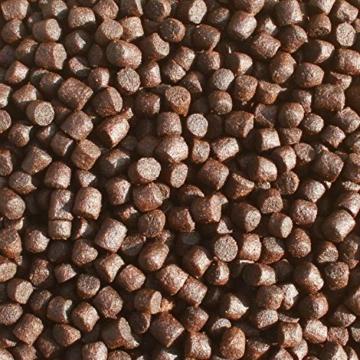 Koifutter Spirulina und Astax, Sommerfutter energiereich, hochverdaulich, Premium Koischwimmfutter , Mega Wachstum, toller Körper, brilliante Farben der Koi, wertvolle arktische Rohstoffe 6mm 2kg - 4