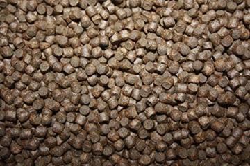 Koifutter, Winterfutter für Koi, langsam sinkendes Energiefutter für Koi mit Spirulina, arktischem Fischmehl u. Fischöl, optimiert für den Winter, Sinkfutter Koi, Tomodachi Winterfood Energy 5mm 1kg - 6