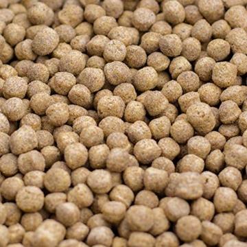 KOIPON Koi-Futter Regular für Frühling Sommer Spätsommer, 3mm, 1,75 kg - Hochwertiges Schwimmfutter für Starkes Wachstum, Farbverstärkung & gesunde Fische - auch für Goldfische - 2