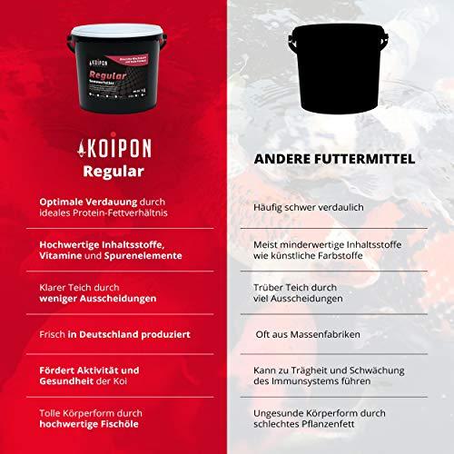 KOIPON Koi-Futter Regular für Frühling Sommer Spätsommer, 3mm, 1,75 kg - Hochwertiges Schwimmfutter für Starkes Wachstum, Farbverstärkung & gesunde Fische - auch für Goldfische - 4