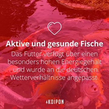 KOIPON Koi-Futter Regular für Frühling Sommer Spätsommer, 3mm, 1,75 kg - Hochwertiges Schwimmfutter für Starkes Wachstum, Farbverstärkung & gesunde Fische - auch für Goldfische - 5
