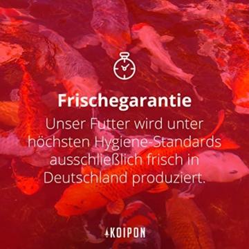 KOIPON Koi-Futter Regular für Frühling Sommer Spätsommer, 3mm, 1,75 kg - Hochwertiges Schwimmfutter für Starkes Wachstum, Farbverstärkung & gesunde Fische - auch für Goldfische - 7