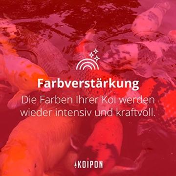 KOIPON Koi-Futter Regular für Frühling Sommer Spätsommer, 3mm, 1,75 kg - Hochwertiges Schwimmfutter für Starkes Wachstum, Farbverstärkung & gesunde Fische - auch für Goldfische - 9