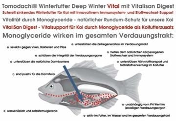 Winterfutter Koi, Gesundheitsfutter Jungkoi, Sinkfutter mit Monoglyceriden, gut für Futterverwertung, Verdauung, Stoffwechsel, Immunsystem, antibakteriell, hochverdaulich, arktische Rohstoffe 3mm 5kg - 3